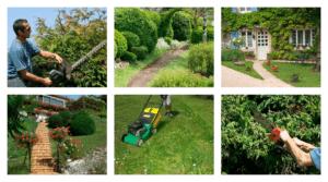 Come effettuare la manutenzione del verde in estate